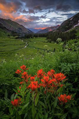 Grateful Dead - Flowers Last Light by Jeff Stoddart