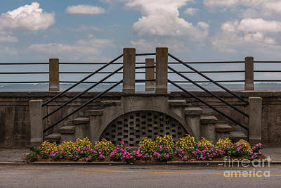 Photograph - Flowers Lead The Path by Dale Powell