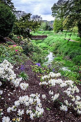 Flowers Of Blarney Castle - Blarney Ireland Art Print