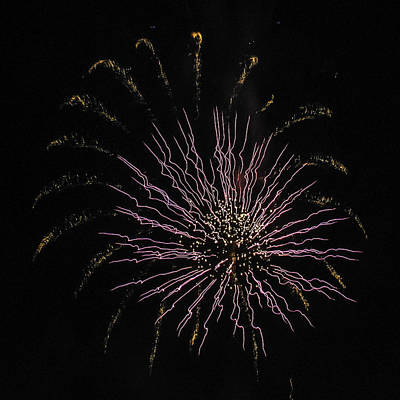 Photograph - Pink And Gold Fireworks by Paula Porterfield-Izzo