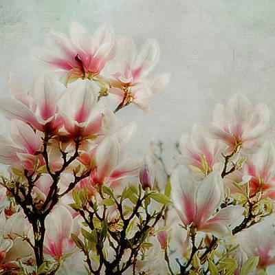 Granger - Flowers Of Spring by Claudia Moeckel