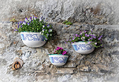 Photograph - Flowers On An Old Stone Wall by Carolyn Derstine