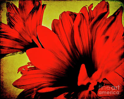 Digital Art - Flowers On Rice Paper by Charles Muhle