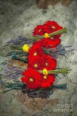 Photograph - Flowers On Rocks by Nick Zelinsky