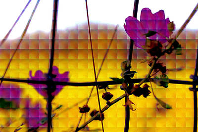 Photograph - Flowers On The Fence Row by Marie Jamieson