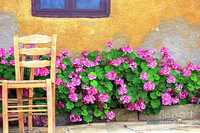 Photograph - Flowers On The Island Of Delos by John Rizzuto