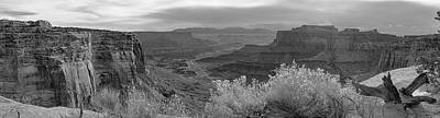 Photograph - Flowers On The Rim by Peter J Sucy