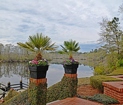 Photograph - Flowers On The River by Linda Brown