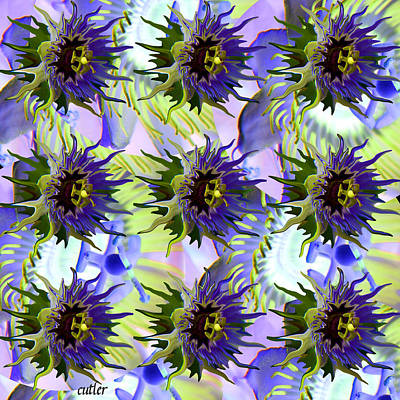 Passion Fruit Digital Art - Flowers On The Wall by Betsy Knapp
