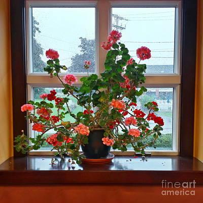 Flowers On The Windowsill Art Print by Marcel  J Goetz  Sr
