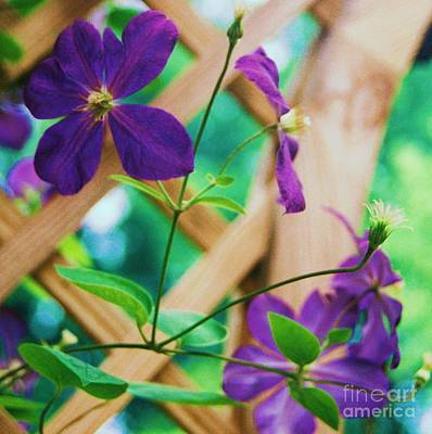 Art Print featuring the painting Flowers Purple by Eric  Schiabor