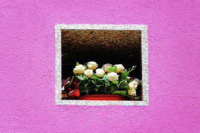 Photograph - Flowers Set Within House Wall On The Island Of Burano by Richard Rosenshein