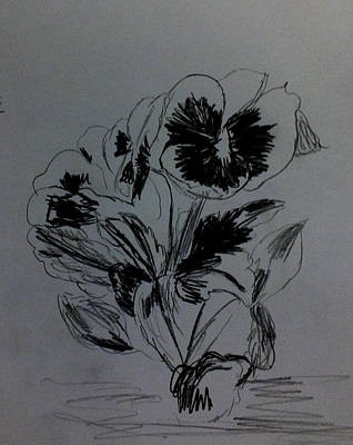 Drawing - Flowers Sketch 2 by Kimmary MacLean