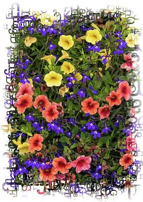 Photograph - Flowers With Border by Carolyn Derstine