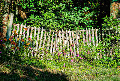 Blue Hues - Flowery Fence by Black Brook Photography
