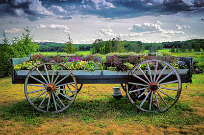 Photograph - Flowery Old Cart by Lilia D