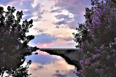 Photograph - Flowery Sunset At The Aloc by Kim Bemis