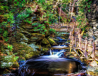 Photograph - Flowing Bushkill Creek by Nick Zelinsky