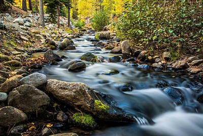 Photograph - Flowing Creek by Maria Coulson