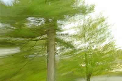 Flowing Motion Original by James Steele