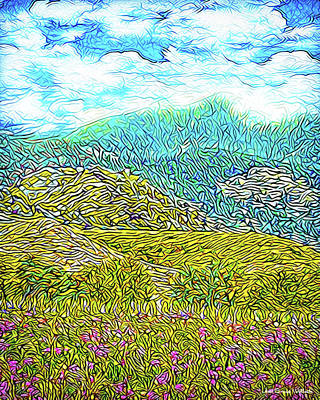 Digital Art - Flowing Mountains - Meadow In Boulder County Colorado by Joel Bruce Wallach