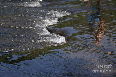 Photograph - Flowing River by Parker O'Donnell