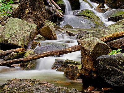 Photograph - Flowing Stream by Jim DeLillo