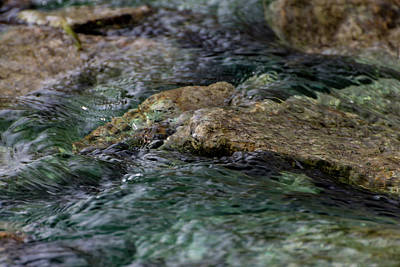 Photograph - Flowing Water by Douglas Killourie