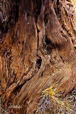 Photograph - Flowing Wood by Christopher Holmes