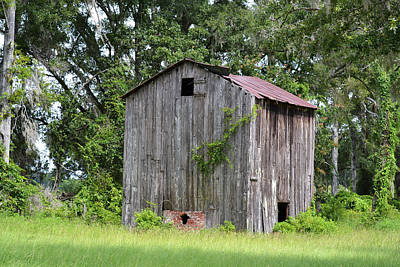 Photograph - Flue Curing Tobacco Barn - Florida by rd Erickson