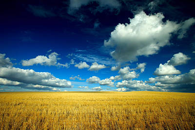 Photograph - Fluffy Clouds by Todd Klassy