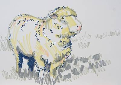 Drawing - Fluffy Sheep Drawing by Mike Jory