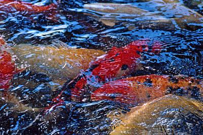 Fluid Gold Art Print by Bruce Blanchard