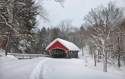 Photograph - Flume Bridge by Robert Clifford