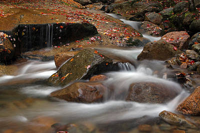 Photograph - Flume Brook by Juergen Roth