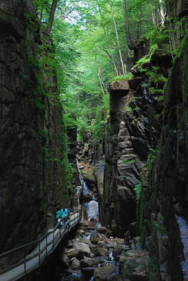 Photograph - Flume Gorge by Suzanne McDonald