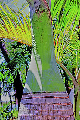 Painting - Fluorescence Of Florida by Mindy Newman