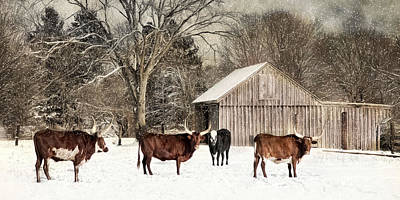 Photograph - Flurries On The Farm by Robin-Lee Vieira