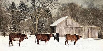 Photograph - Flurries On The Farm by Robin-Lee Vieira