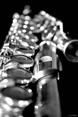 Photograph - Flute Series II by Lauren Radke