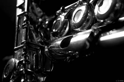 Photograph - Flute Series Iv by Lauren Radke