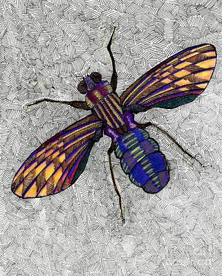 Dave Drawing - FLY by Dave Edwards