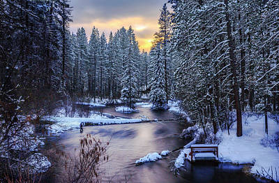 Print featuring the photograph Fly Fisherman On The Metolius by Cat Connor