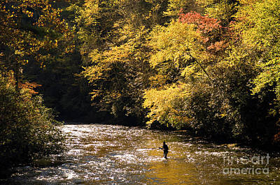 Art Print featuring the photograph Fly Fisherman On The Tellico - D010008 by Daniel Dempster