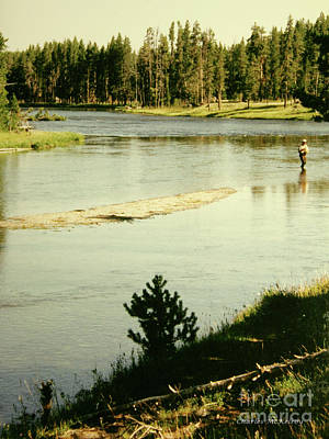 Photograph - Fly Fishing by Charles McKelroy