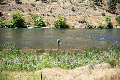 Photograph - Fly Fishing On The Deschutes River by Tom Cochran