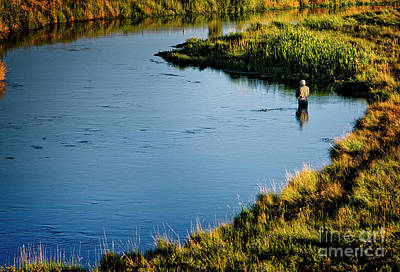 Photograph - Fly Fishing  by Scott Kemper