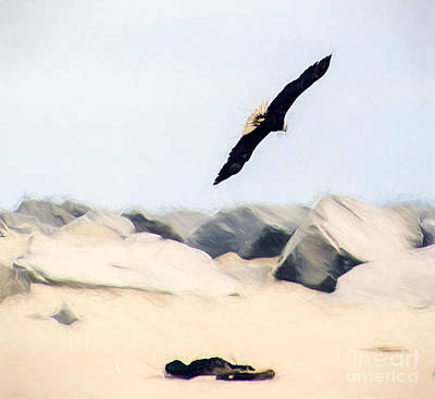 Photograph - Fly Free by Billie-Jo Miller