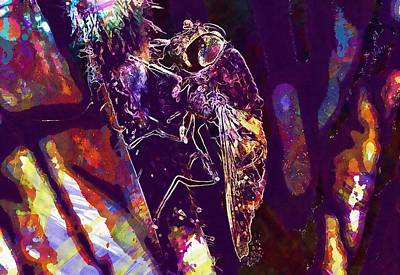 Digital Art - Fly Insect Eye Invertebrate  by PixBreak Art