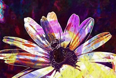 Digital Art - Fly Marguerite Flora Nature Summer  by PixBreak Art